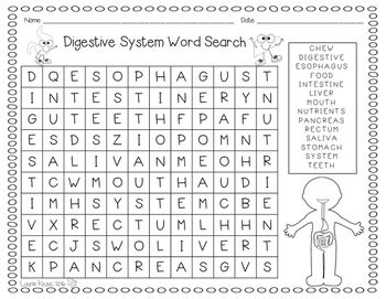Human Body Vocabulary Word List - Enchanted Learning