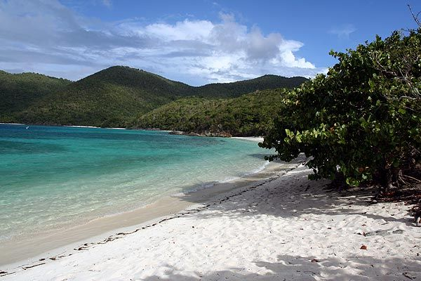 Hawks Nest Beach Usvi St John Virgin Islands Beaches