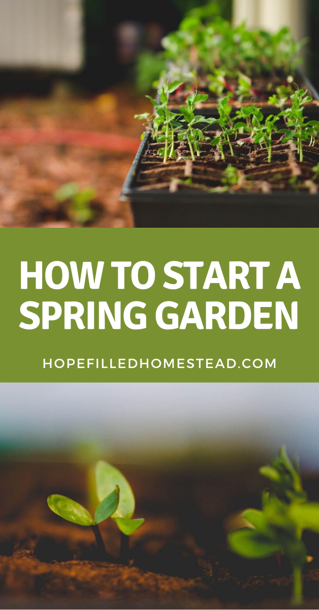 How To Start A Garden This Spring In 2021 Spring Garden Spring Vegetable Garden Garden Planning