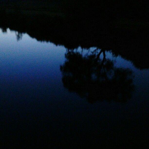 Sûre river, Echternach, Luxembourg #luxembourg #europe #travel #river #dusk #blue #reflection #tree #webstagram #instagram #photooftheday #echternach #germany - @stezbot- #webstagram