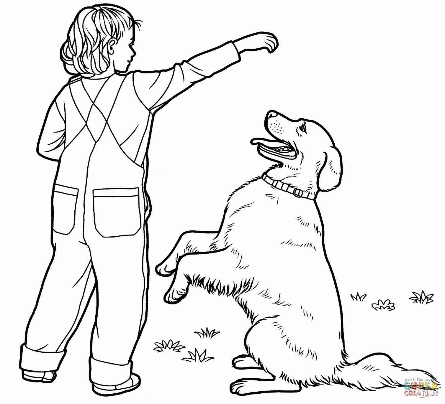 Golden Retriever Coloring Page Golden Retriever Coloring Pages Babbleedition Albanysinsanity Com Albanysinsanitycom B Golden Retriever Retriever Beestjes