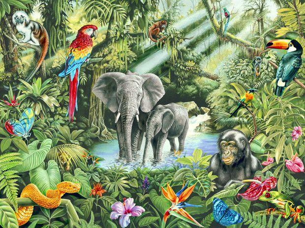 Kinderkamer Jungle Behang : Jungle fotobehang behang photowall babykamer