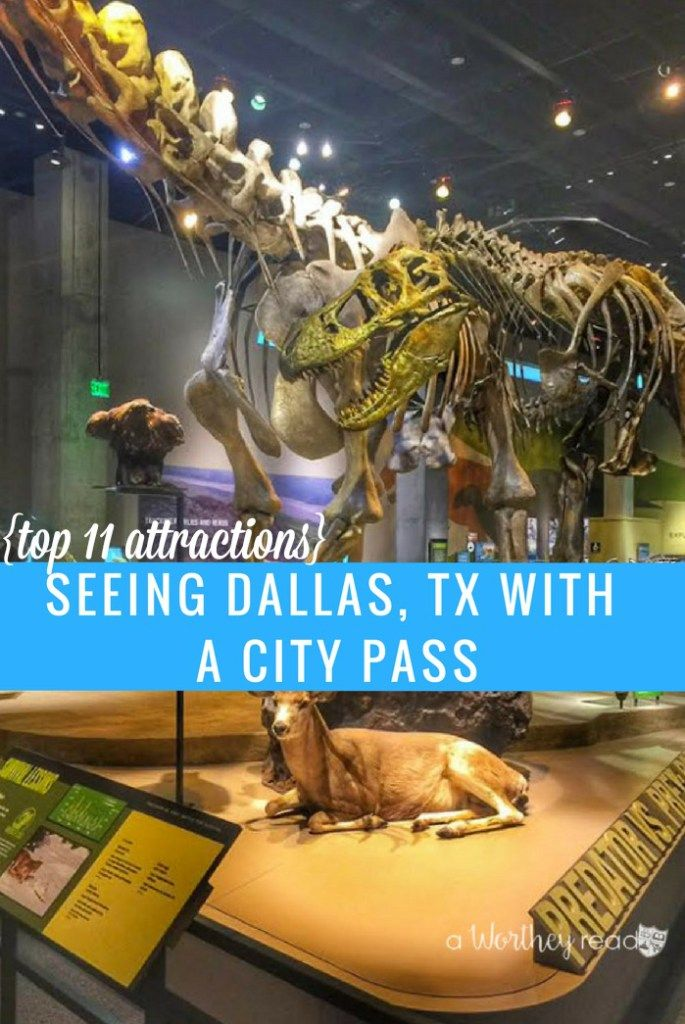 Dallas offers a ton of things to do for families, couples ...