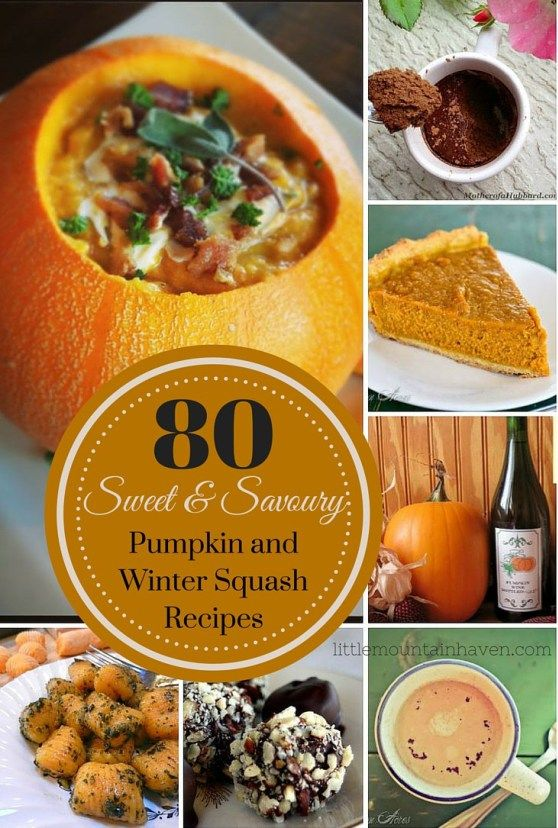 Sweet & Savoury Pumpkin and Winter Squash Recipes Winter