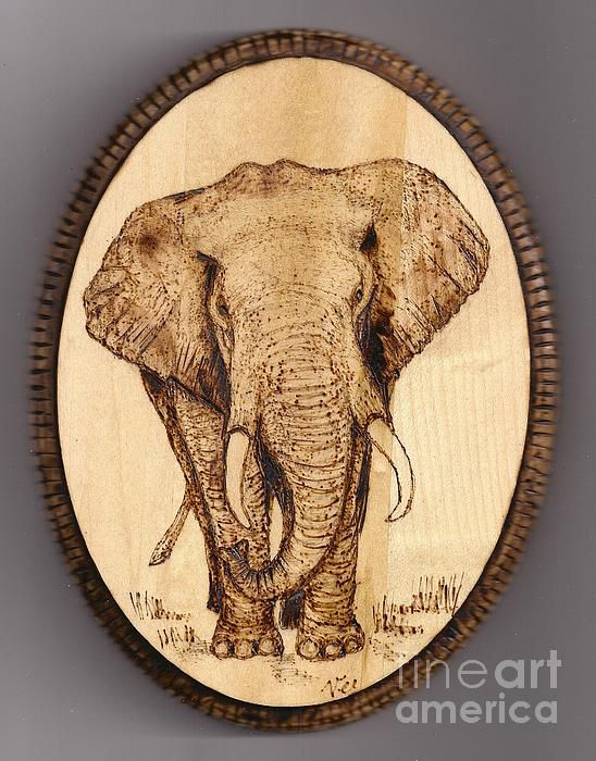 Hand Pyrography Art Bracelet Elephant Other Art