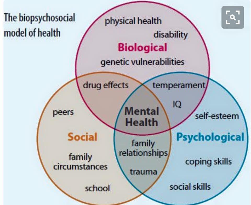 The Biopsychosocial Model Of Health Social Work Interventions Social Work Social Work Theories