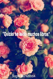 Resultado De Imagen Para Frases Con Fondo De Flores Tumblr
