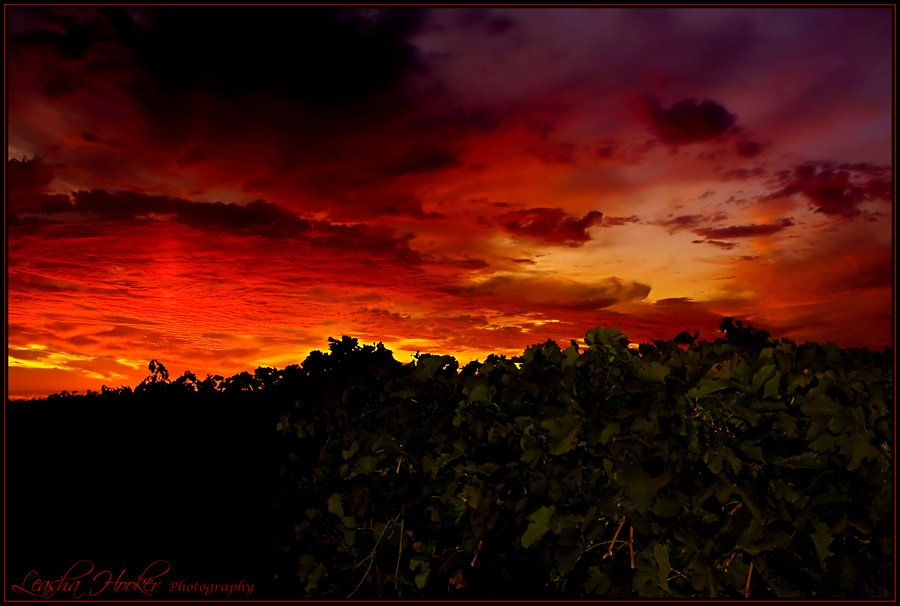 http://photoity.com/20-excellently-captured-sunset-photos/