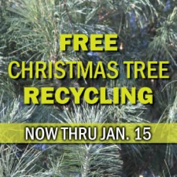 Liberty Missouri Tree Recycling And So Much More