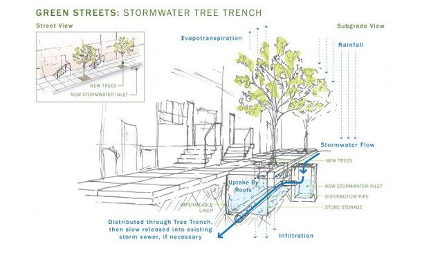Philly Enhanced tree trench
