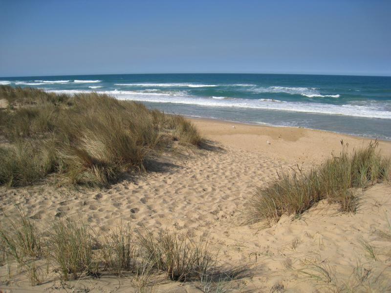 Golden Beach Victoria