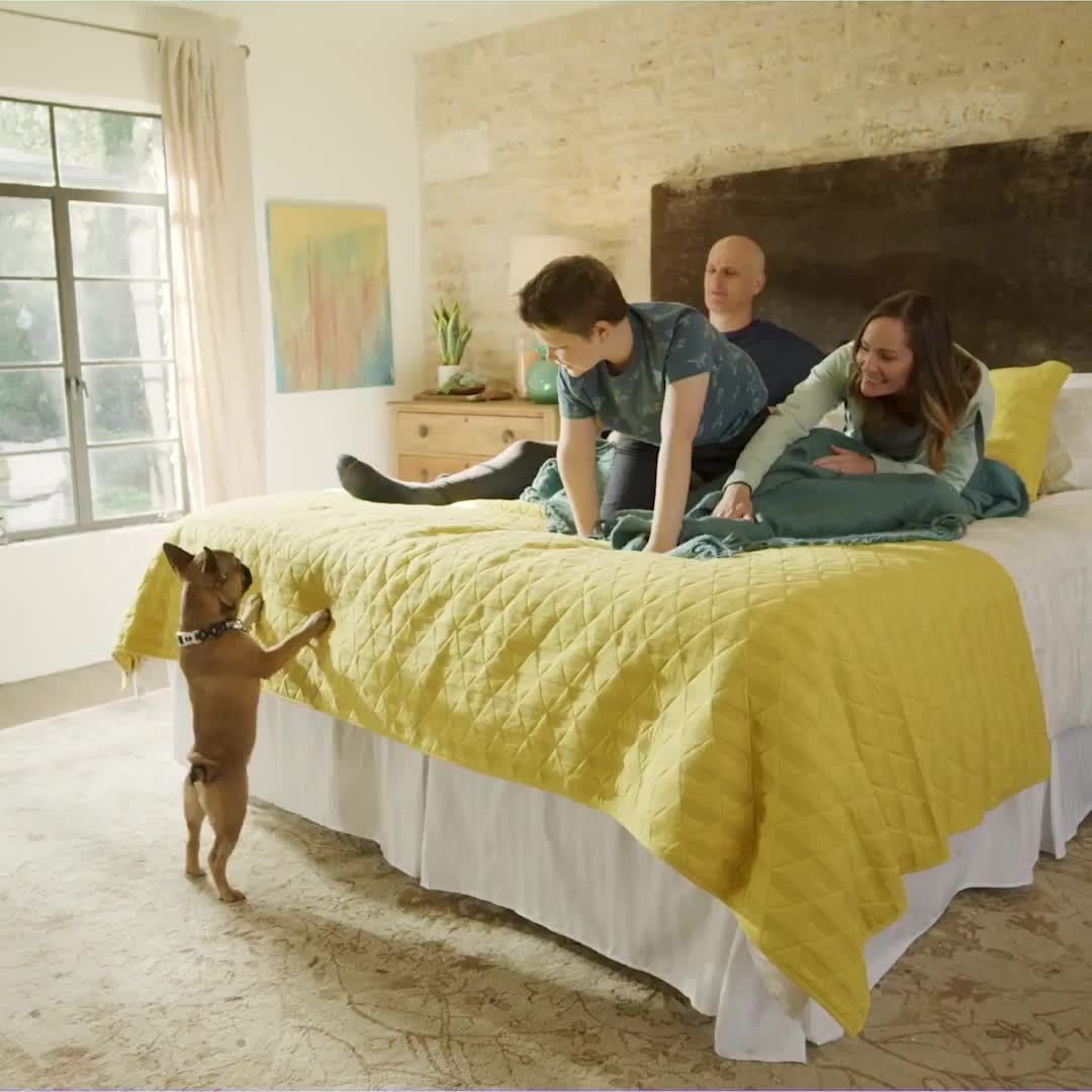 Hgtv on instagram give your pup a leg up with this diy