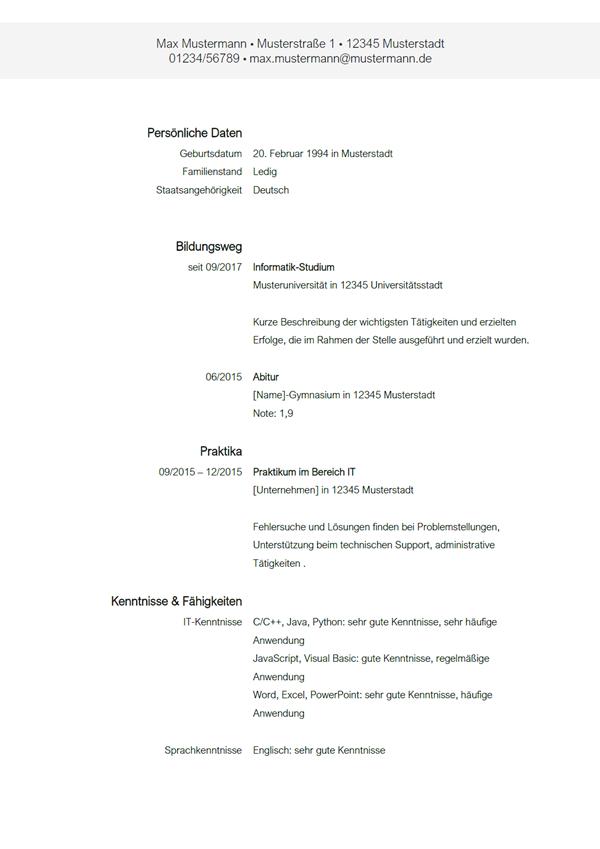Lebenslauf Als Werkstudent Informatik In 2020 Informatik Studium Informatik Lebenslauf