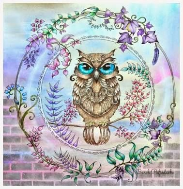 Explore Owl Eyes Art And More EyesOwl ArtEnchanted Forest Coloring BookEnchanted