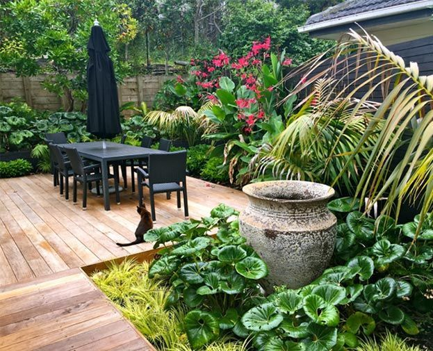 KS Landscapes Subtropical Oasis Love the setup and how the plants are planted a...