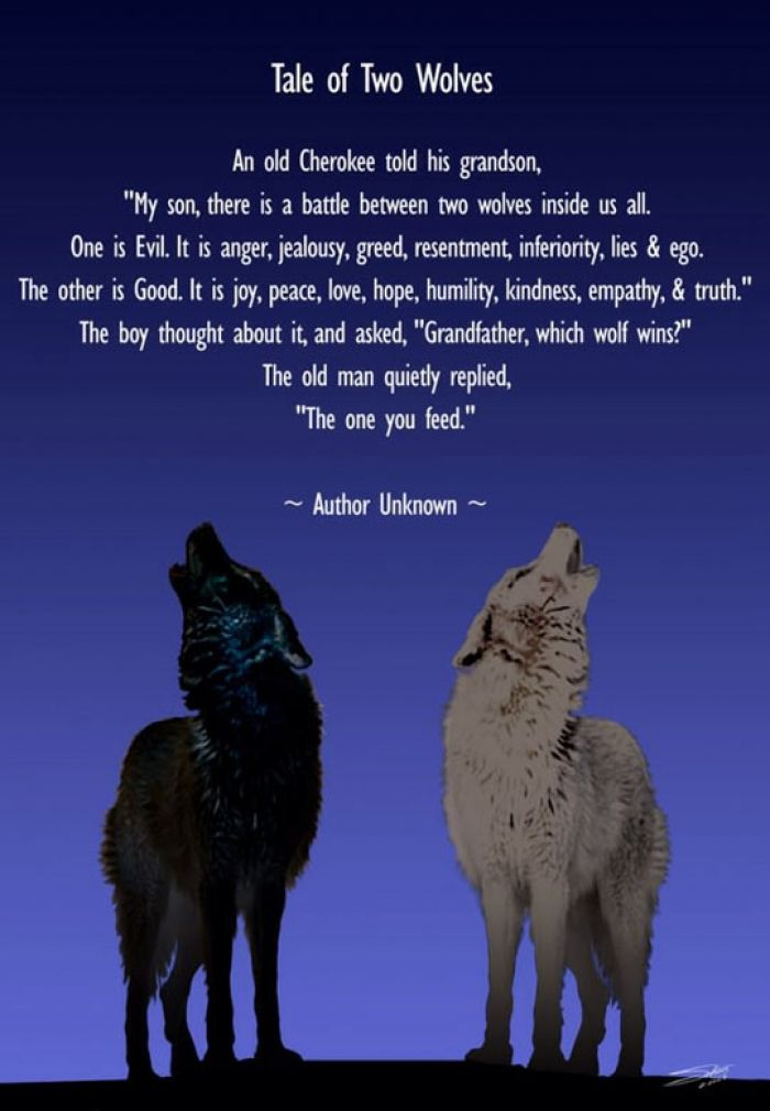Anger Management Quotes Wallpaper Story Of Two Wolves Inspirational Quotes Wolf Quotes