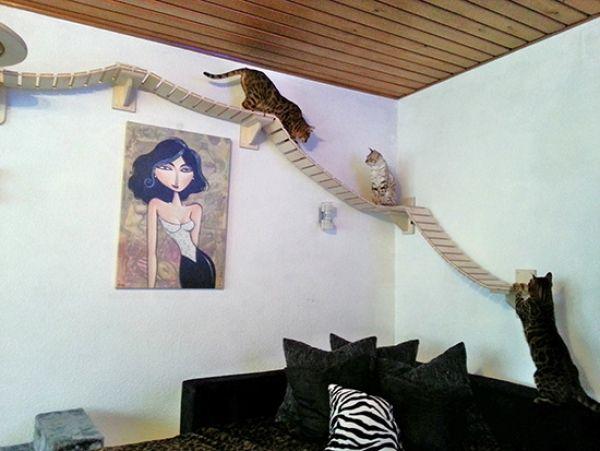 Kedilerin Eğlenceli Oyun Alanları - Stefan Hofmann - http://www.3oda1salon.net/hobi-odasi/kedilerin-evinizdeki-eglenceli-oyun-alanlari