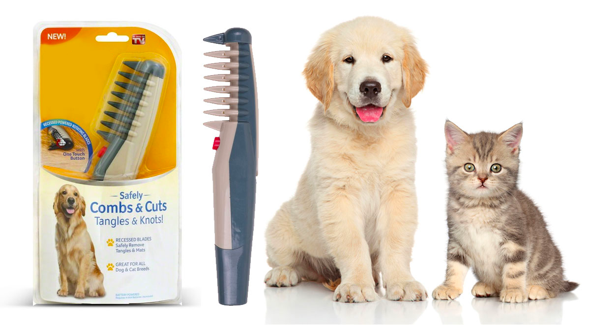 A New Pet Care Brush That Addresses Shedding Bad Odors Skin