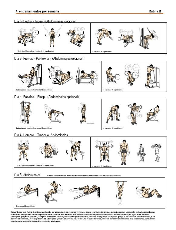 rutina de ejercicios para aumentar masa muscular - Buscar