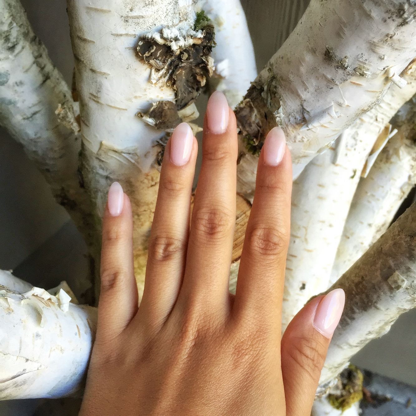Almond Oval Acrylic Nails Natural Pink Gel Polish Short Acrylics Natural Looking Acrylic Nails Oval Acrylic Nails Almond Nails Designs