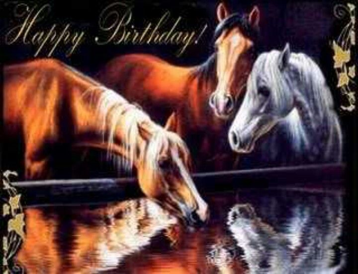 Happy Birthday For Horse Lovers Horses Horse Pictures Animals