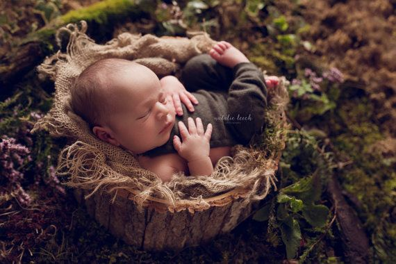 Bark wooden bowl wooden prop photo prop newborn prop by dutchstyle