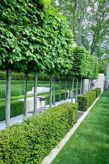 14 garden design Narrow fence ideas