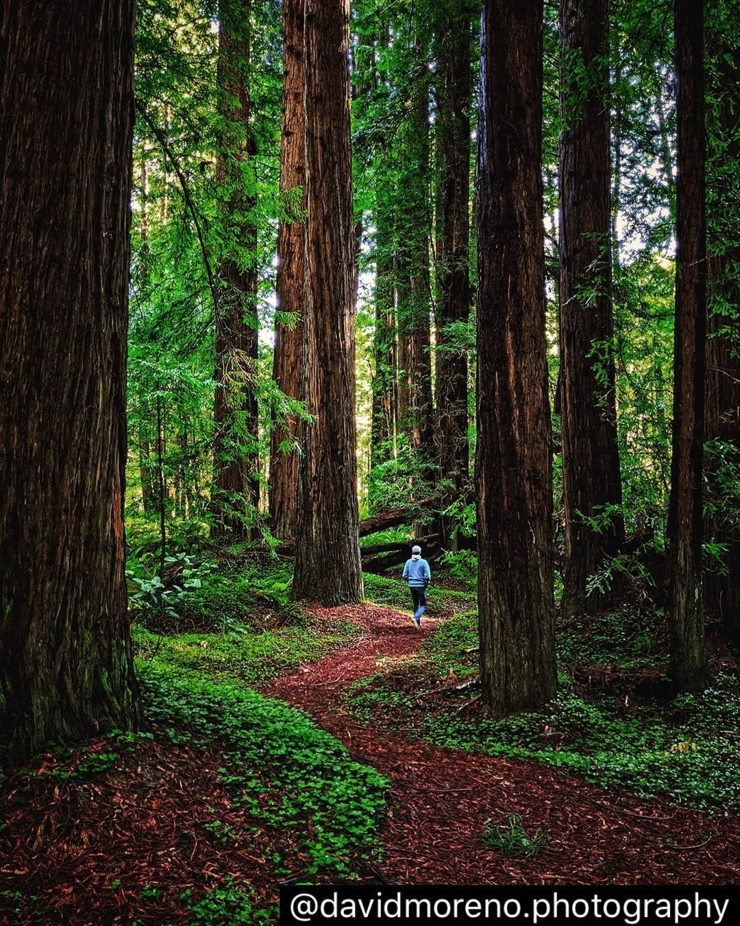 Of All The Paths You Take In Life Make Sure A Few Of Them Are Dirt John Muir We Couldn T Agree More And We Ve Got Plenty Of Pat John Muir