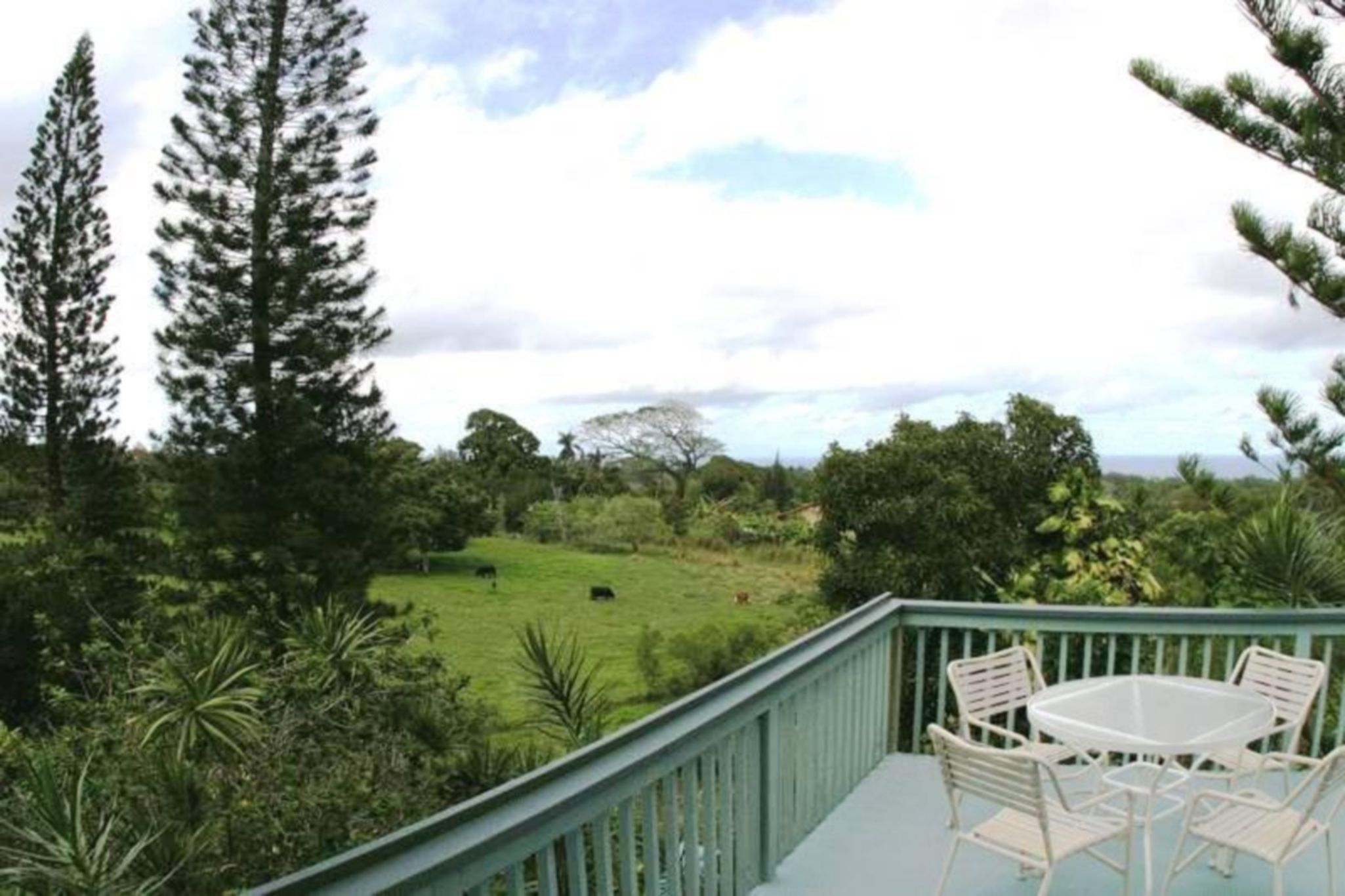kohala country adventures guesthouse is the perfect base from
