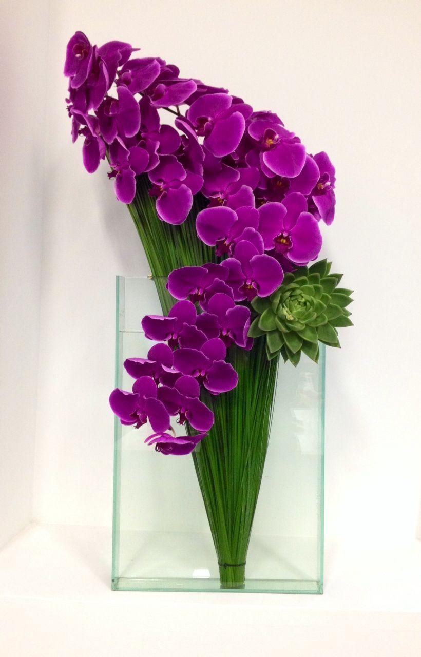 Orchid arrangement blumen pinterest blumen blumen gestecke und orchideen - Orchideen arrangement ...