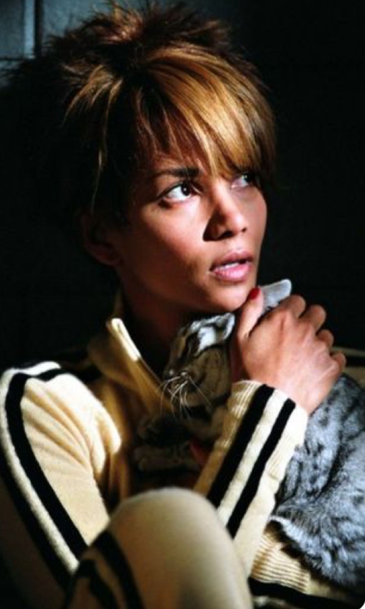 pin by holly bostick on halle berry | halle berry, cats, cat