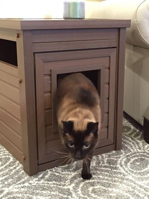 Source Wooden Pet Box Indoor Cat House Custom Made Wooden Cat House On M Alibaba Com кошачий туалет кошачьи лотки кошки