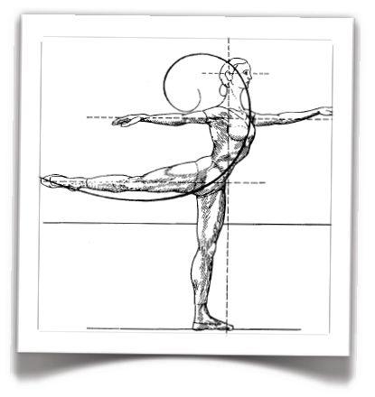 Seattle Dance Medicine - Home | Performance art, Art, Seattle