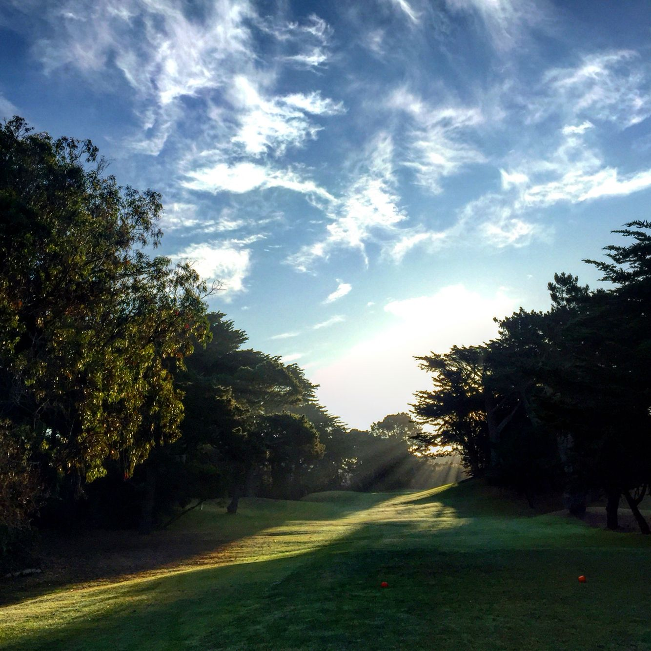 Golden Gate Park Golf Course San Francisco, CA Scenery