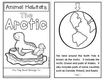 animal habitats the arctic a flap book project for grades 1 2 1st grade animal habitats. Black Bedroom Furniture Sets. Home Design Ideas