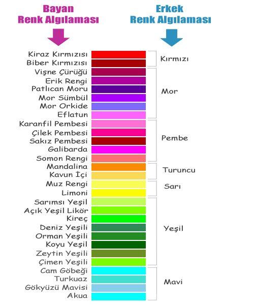 Renk Cemberi Skalasi Katalogu Turkce Renkler Alintilar Mizah