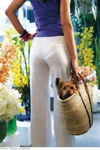 58c523a86 White panties and white pants do not work.....CB