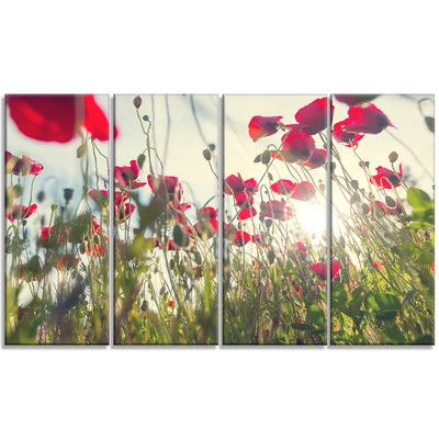 DesignArt 'Poppy Flowers on Summer Meadow' 4 Piece Photographic Print on Wrapped Canvas Set