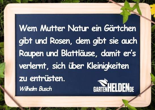 Wilhelm Busch Zitat Gute Spruche Gartengedichte