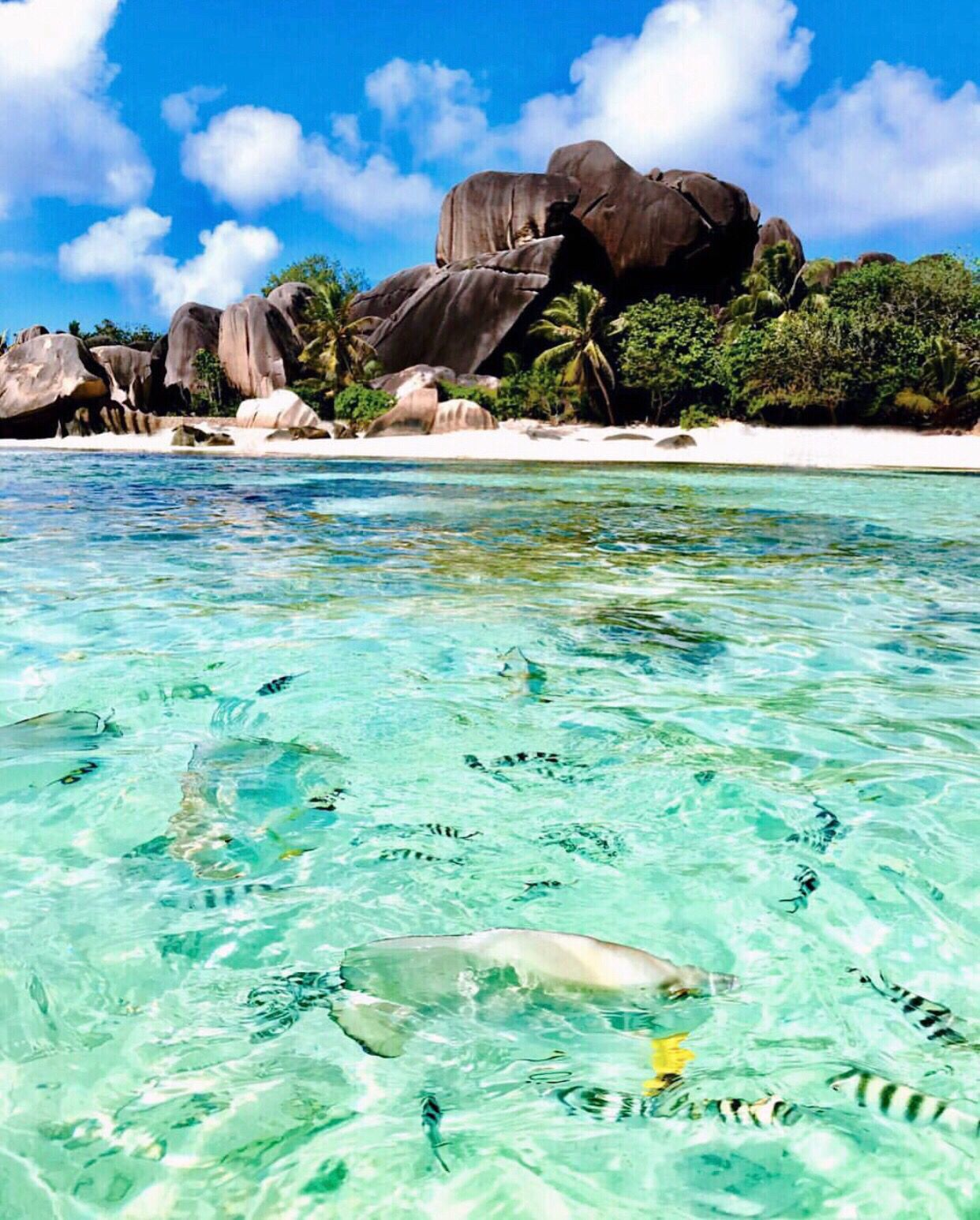 Seychelles Beach: Seychelles Is An Absolutely Must Visit Place! Check Out My