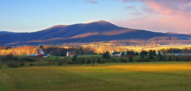 Weddings - Shenandoah Woods Vacations and Weddings in Luray, Virginia