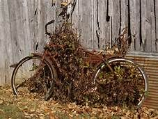 Pinterest Rusty Bicicles - Yahoo Image Search Results