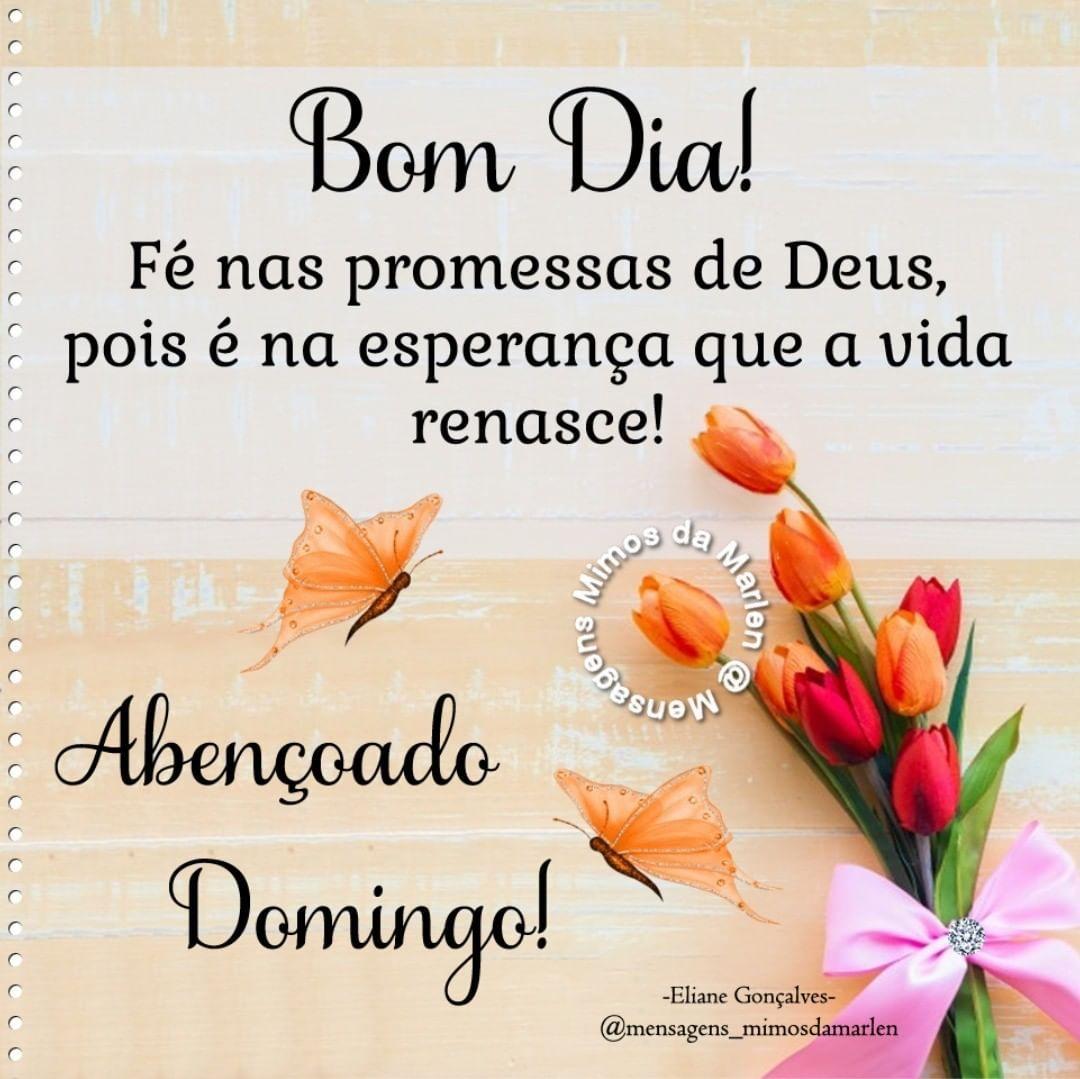 Bomdia Domingo Paz Gratidao Deus Mensagens Mimosdamarlen