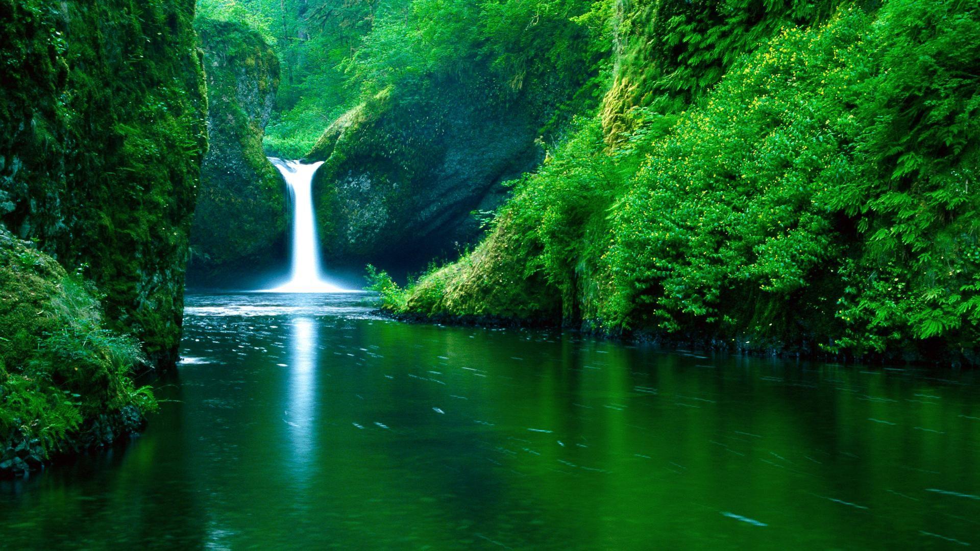 Pin By Get Wall On I Dig Jungles Waterfall Waterfall Wallpaper Punchbowl Falls