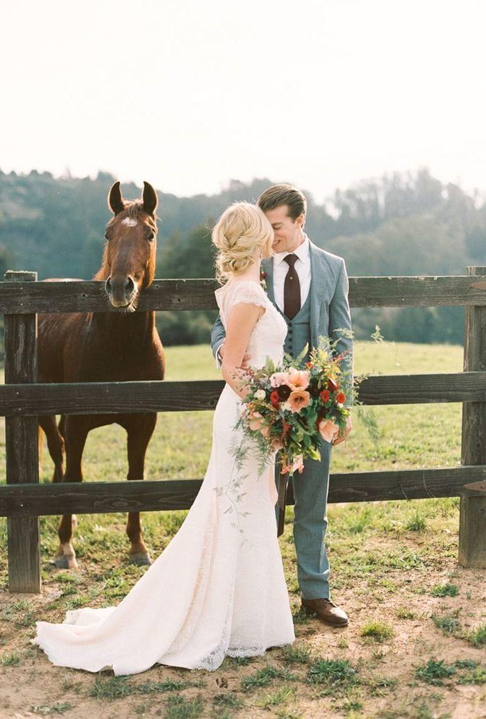 hochzeitsfotos mit pferden die sch nsten pferdebilder aller zeiten pinterest pferd bilder. Black Bedroom Furniture Sets. Home Design Ideas