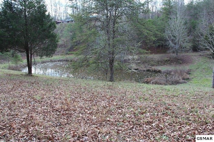 Park like setting with pond and mountain views! 6.78 acres filled with wildlife. Several great building spots!  Contact me for more information or check out my website to search all listings in our area!  Brandon Williams Your Agent in the Smokies! REALTOR® / Affiliate Broker License # 302107 Brandon@youragentinthesmokies.com www.youragentinthesmokies.com 865-806-9005 Mobile 865-908-4567 Office  865-280-1433 Fax 400 Park Rd, Suite 209 Sevierville, TN 37862