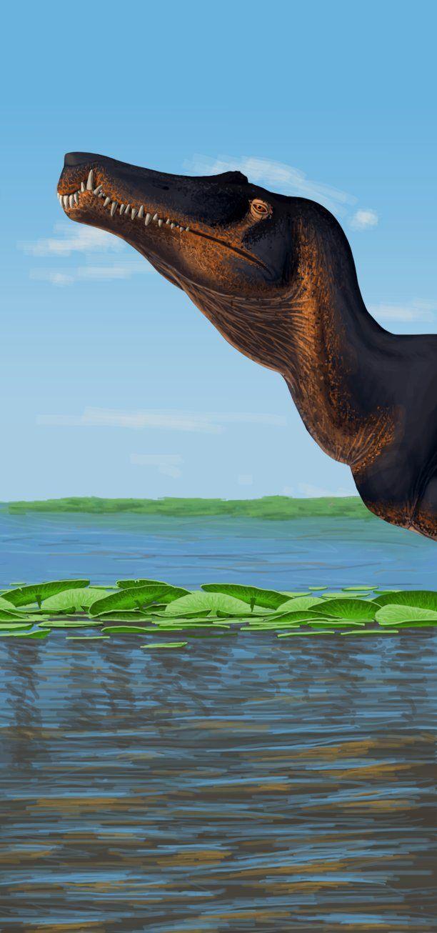 Spinosaurus aegypticus #prehistoriccreatures