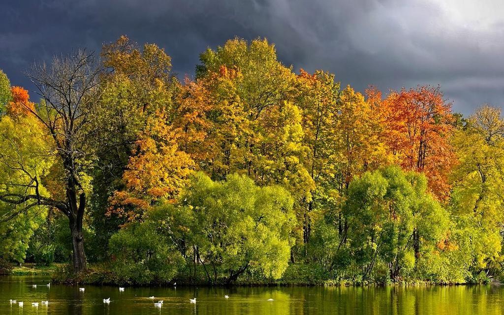 Filipe Moura On Twitter Beautiful Nature Pictures Beautiful Images Nature Beautiful Nature Wallpaper Hd
