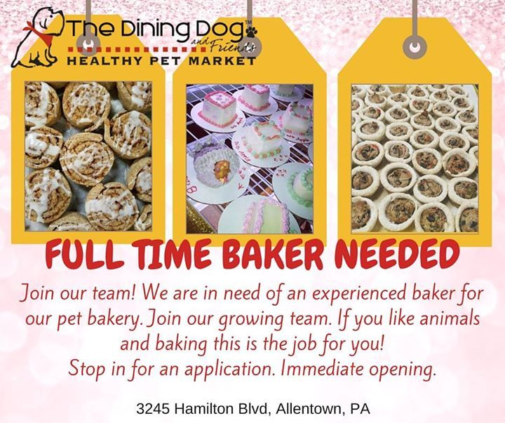 FULL TIME BAKER NEEDED   The Dining Dog And Friends Located At   Cake  Decorator Resume  Cake Decorator Resume