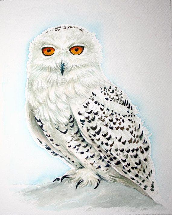 Snowy Owl pittura acquarello originale | Tattoo | Pinterest